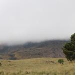 La neblina, por su altura, suele dar otro marco al encuadre.