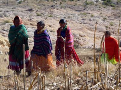 raramuris o tarahumaras en la sierra de chihuahua