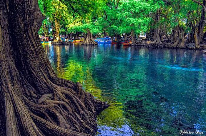 Lago Camécuaro Tangancícuaro Michoacán (Guillermo González) 2