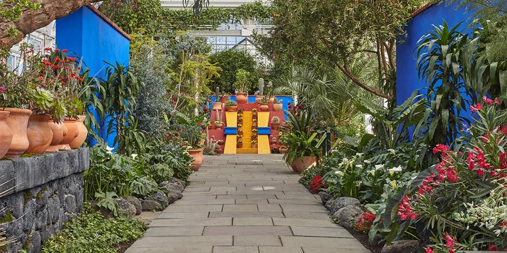 El encantador jard n de frida kahlo como un santuario del for Jardines pequenos mexicanos