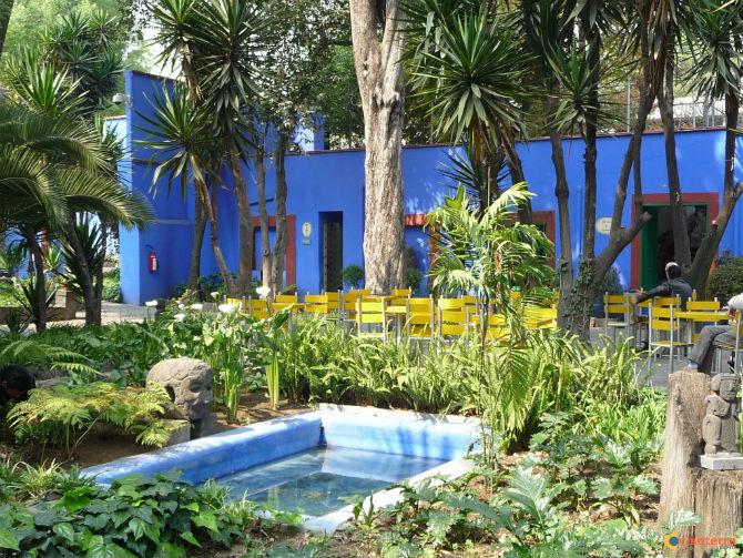 jardin frida kahlo 2