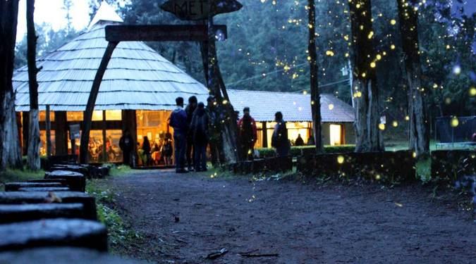 santuario luciérnagas tlaxcala