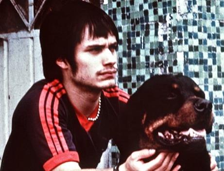 amores perros películas mexicanas