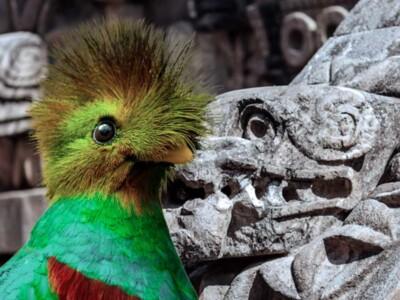 animales-sagrados-mexico-mexicanos