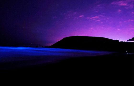 Xpicob playas bioluminiscentes méxico
