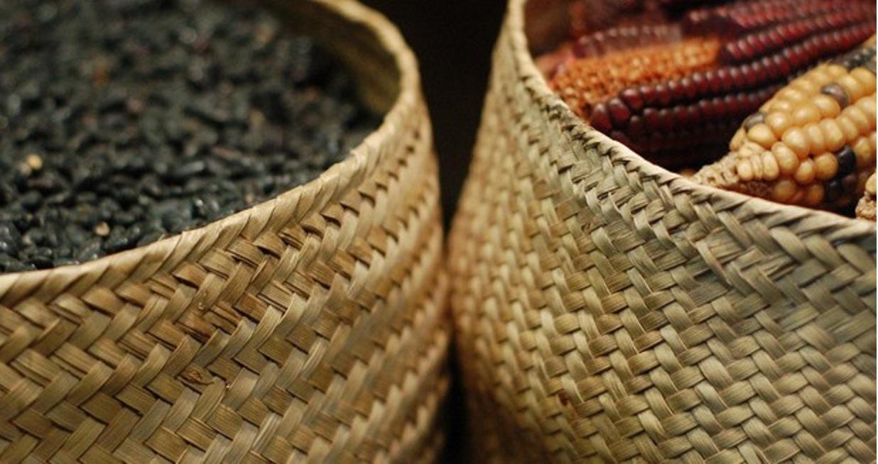Los beneficios inesperados de comer juntos frijol y ma z for Sembrar maiz y frijol juntos