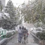 aguascalientes nevadas méxico 2016