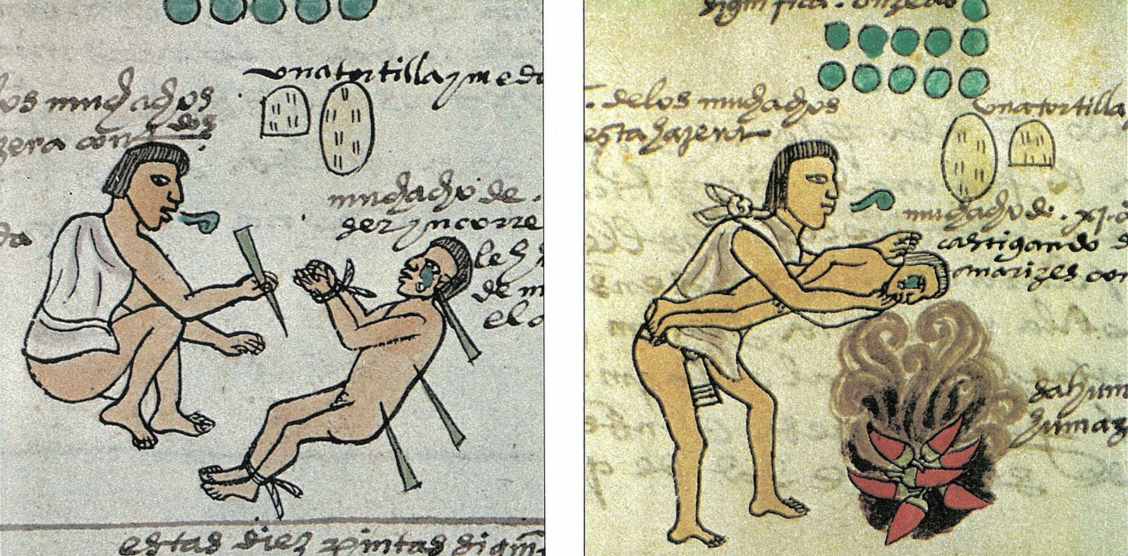 Imagen del codice mendoza muestra educación en escuela entre aztecas o mexicas