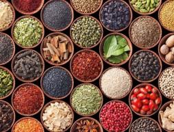 plantas, semillas hierbas y especies medicinales de mexico
