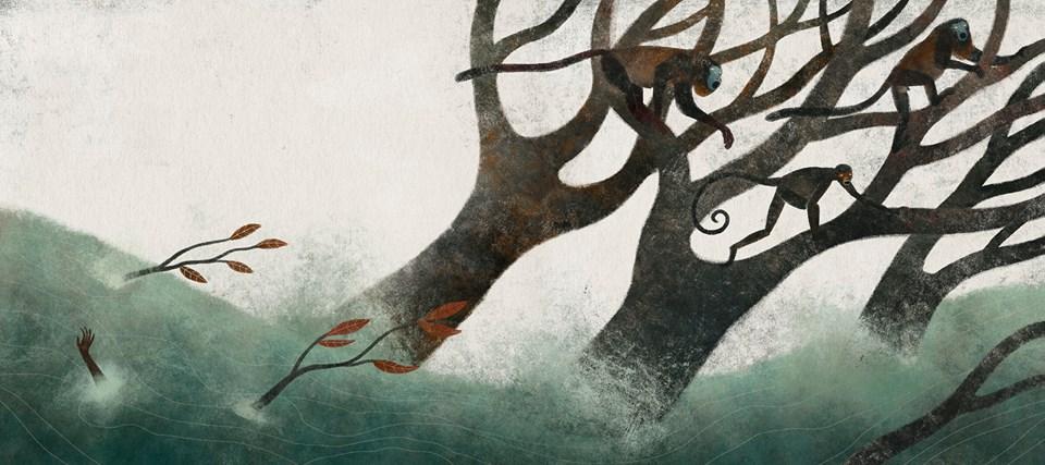 Monos, mensajeros del viento ilustraciones Juan Palomilla
