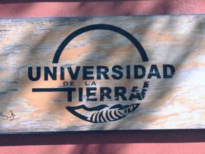 universidad, educacion en mexico, alternativa organica