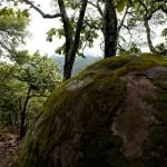 piedras bola jalisco