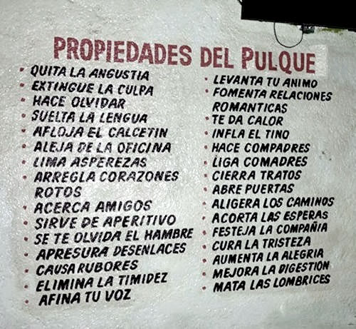 pulque_propiedades_medicinales