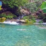Foto: http://jaumavetamaulipas.weebly.com
