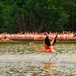 Foto:Foto:yucatan.for91days.com