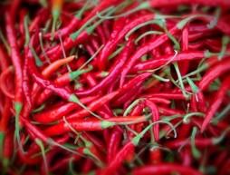 por qué nos gusta enchilarnos chile picante