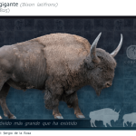 bisonte gigante era de hielo méxico