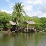 Pantanos de Centla, en Tabasco