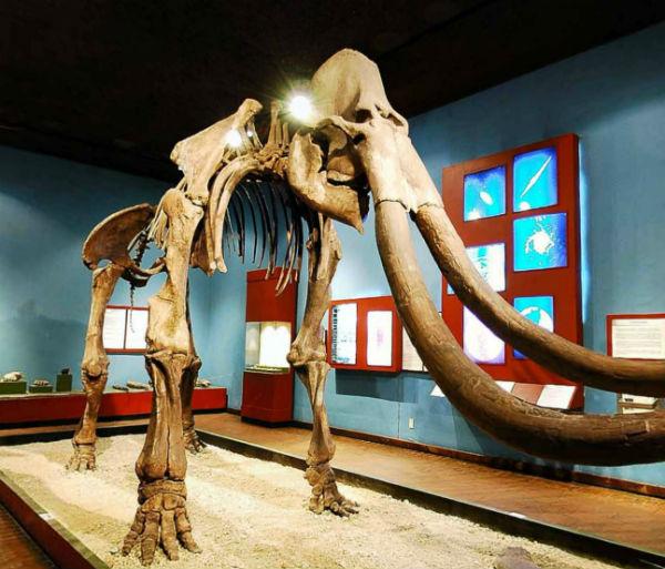 Museo Regional de Guadalajara paseo virtual