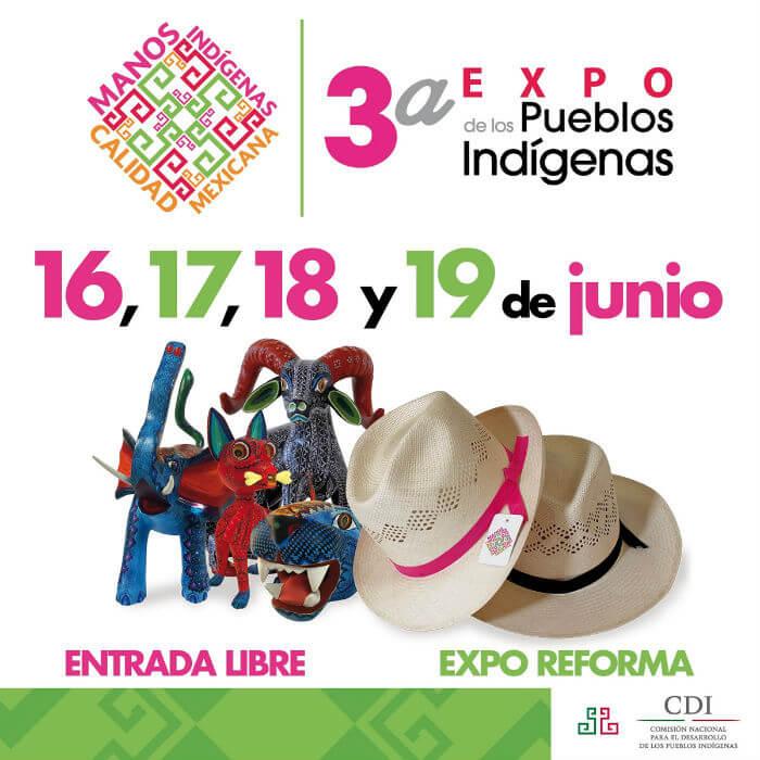 expo de pueblos indígenas 2016