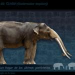 elefantes méxico edad de hielo