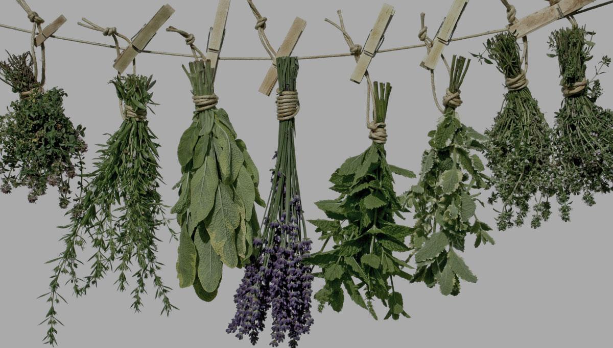 Resultado de imagen para Quema incienso de plantas de montaña para purificar tu hogar.