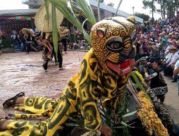 la danza de los tecuanis