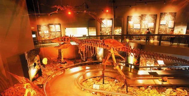 Museo del Desierto, Saltillo paseos virtuales