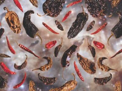 chiles secos, diversidad de chiles, recetas con chiles secos