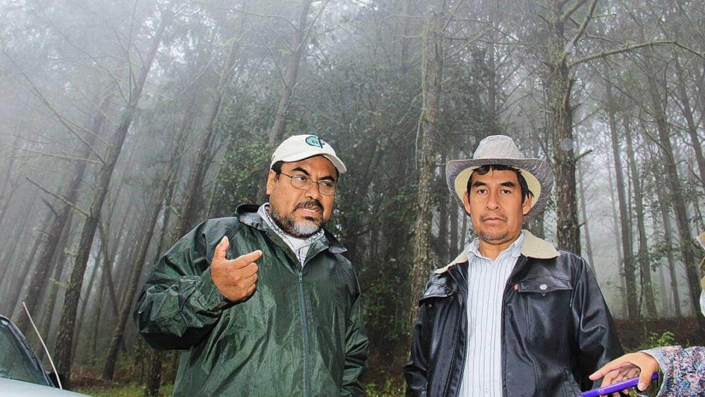 Laatzi Du mejor bosque sustentable méxico oaxaca