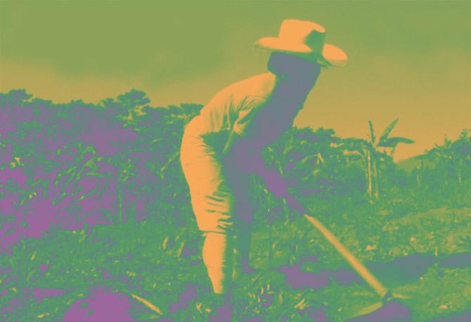 indigena totonaca de mexico trabajando la milpa como en mito del diluvio