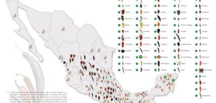 diversidad de chiles, chile seco, chile mexicano