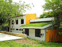 techos verdes económicos chiapas