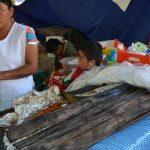 zacahuil tamal