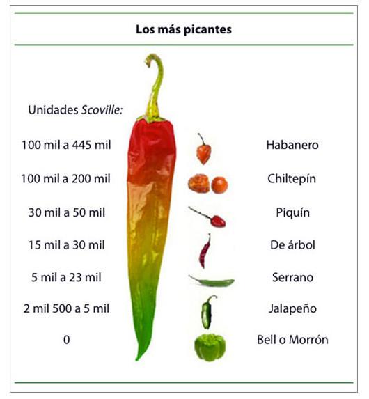 chiles mas picosos mas consumidos mexico