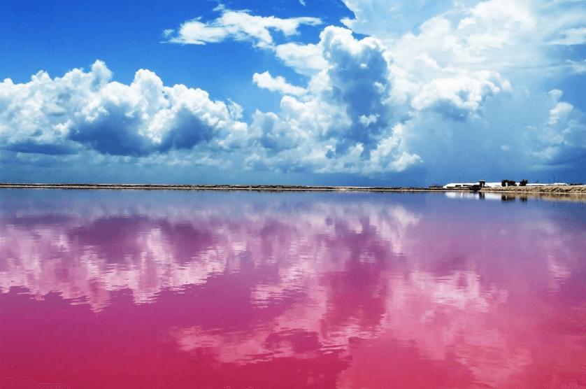 el-improbable-y-asombroso-lago-rosa-de-yucatan-fotos