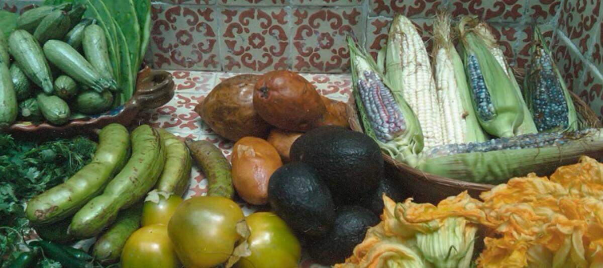 gastronomia prehispanica, recetas prehispanicas, cocina mexicana