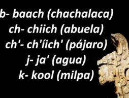 cursos maya online