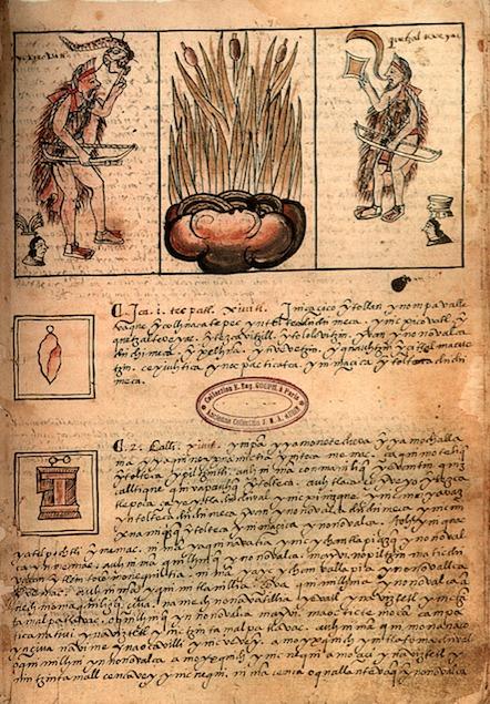 codice-badiano
