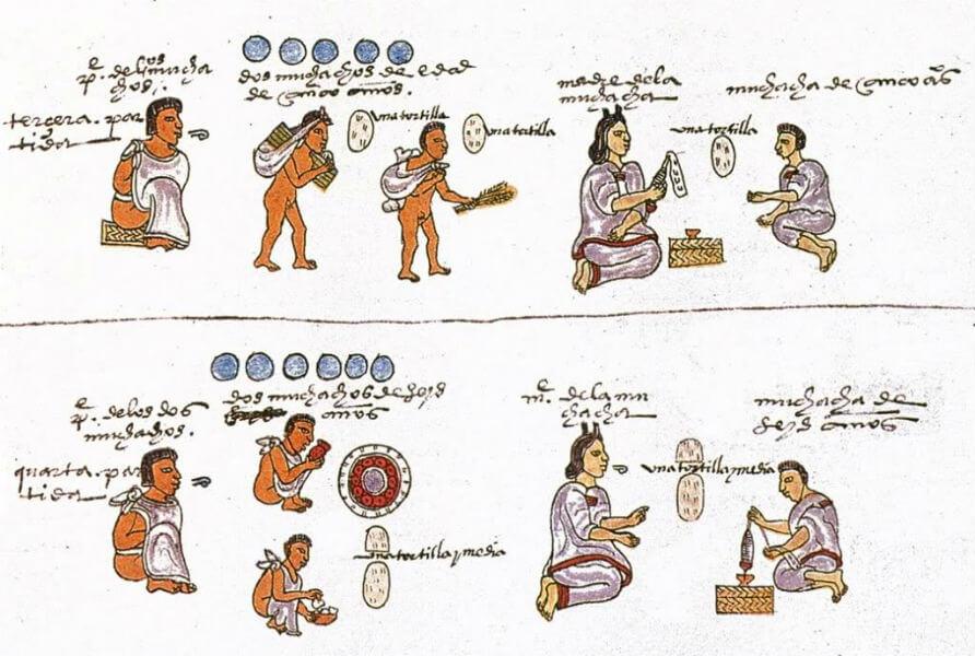 codice mendoza felcidad aztecas mexica