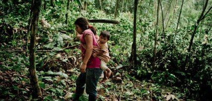Sobre la importancia de las mujeres indígenas en los bosque mexicanos