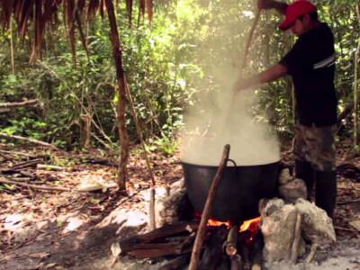 chicle invento maya