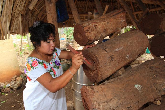 endulzantes naturales miel maya mexico
