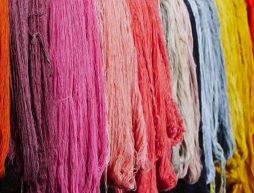 tintes colorantes naturales prehispanicos mexico