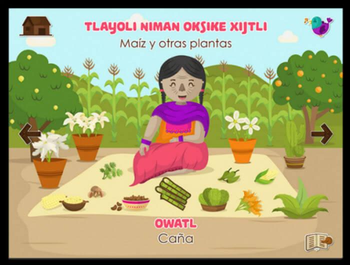 aplicaciones para aprender nahuatl lenguas indigenas mexico