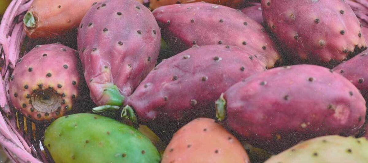 tunas, beneficios nopal, dieta nopal, fruta mexicana