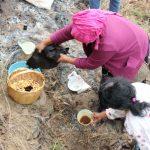 La siembra: una práctica de la Soberanía Alimentaria