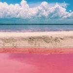 """Laguna """"Las Coloradas"""", Yucatán."""