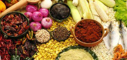programa tu cocina gastronomia mexicana canal once