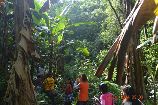 Santa Maria Chimalapa ecoturismo istmo